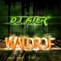 Dj Aier - Waldrof